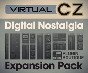 300-x-250-virtual-cz-expansion