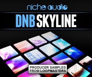 Niche-dnb-skyline-300-x-250