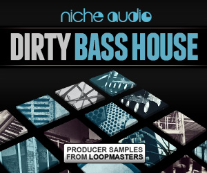 Niche-dirty-bass-house-300-x-250