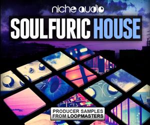 Niche-soulfuric-house-300-x-250