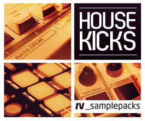 Rv-house-kicks-300-x-250