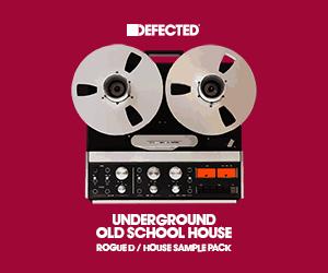 Rogued undergroundoldschoolhouse 300x250
