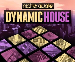 Niche dynamic house 300 x 250