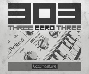 Lm three zero three 300 x 250