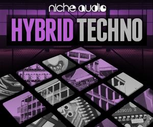 Niche hybrid techno 300 x 250