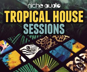 Niche tropical house 300 x 250