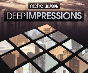 Niche deep impressions 300 x 250