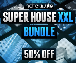 Niche super house xxl 300 x 250