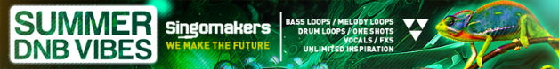 Singomakers summer dnb vibes  bass  loops  melody  loops  drum  loops  one  shots  vocals  fxs patches inspiration 728 90