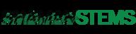 Shaman logo dark