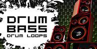 Dnb_loops_banner_lg