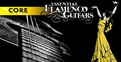 Flamenco_banner_lg