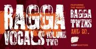 Ragga_rectangle-2