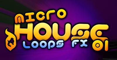 Microhouse_01_512