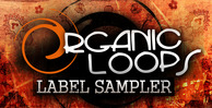 Organic_loops_label_sampler_1000_x_512
