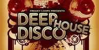 Deep disco house 1000x512
