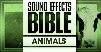 Sound effects bible animals 1000 x 512