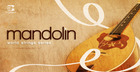 World String Series - Mandolin