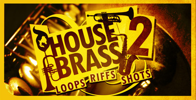 Dgs house brass 02 512