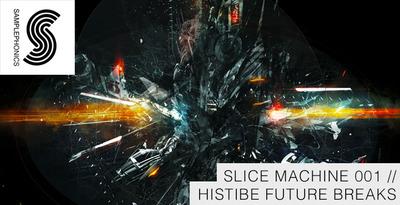 Histibe_future_breaks_banner