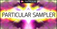 Particular label sampler 2013 1000x512 300