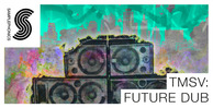Tmsv future dub 1000x512