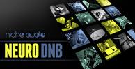Niche neuro dnb 1000x512