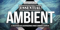 Lm essential ambient 1000 x 512