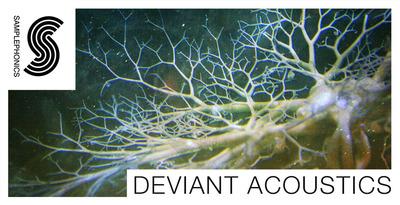 Deviant acoustics 1000x512