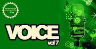 Voice7_1000x512