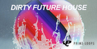 Dirty Future House