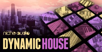 Nichedynamichouse1000x512