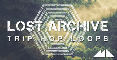 Lost archive banner