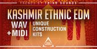 Triad sounds   kashmir ethnic edm 1000x512