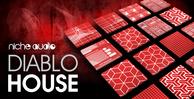 Nichediablohouse1000x512