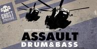 Assaultdnb banner big