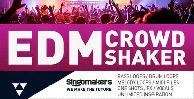 Edm crowd shaker 1000x512 web