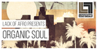Lack Of Afro Presents Organic Soul