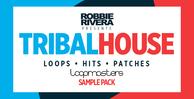 Robbie rivera   tribal house bass   drum loops
