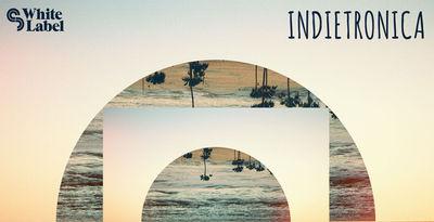 SM White Label - Indietronica
