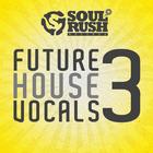 Srr-futurehouse3-1000