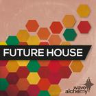 Wa_future_house_1000x1000