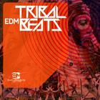 Tribalbeats_1000x1000_300dpi