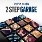 Niche_2_step_garage_1000_x_1000