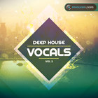 Deep_house_vocals_3-press-pack