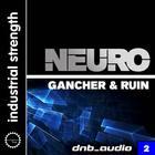 Dnba2_gnr_neuro_1000x1000