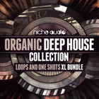 Nicheorganicdeephousecollection1000x1000