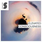 Elevated-consciousness-1000