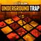 Niche underground trap 1000 x 1000