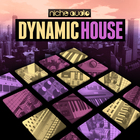 Nichedynamichouse1000x1000